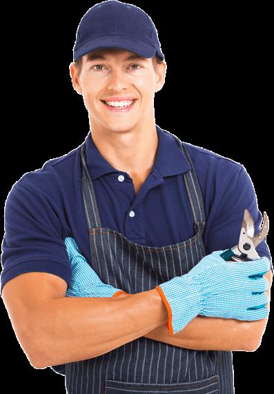 servicii de gradinarit bucuresti